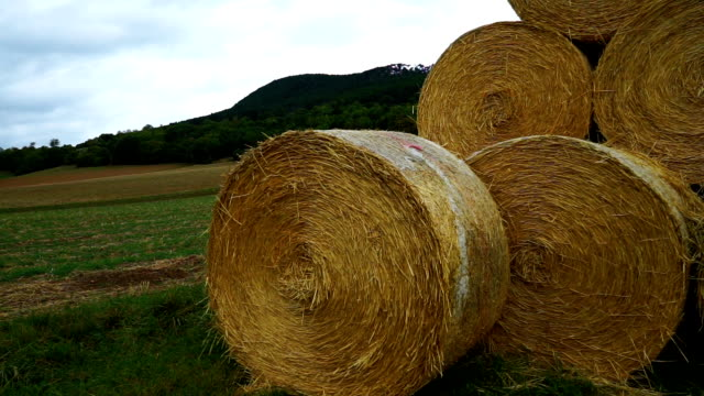 there's bale - hay stack stock videos & royalty-free footage
