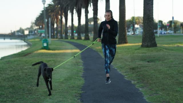 vídeos y material grabado en eventos de stock de ¡ no hay mejor compañero de ejercicio! - autodisciplina