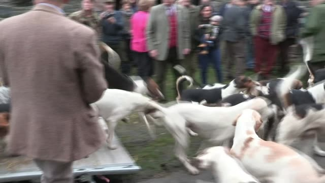 Theresa May defends government handling of NHS / Cabinet reshuffle speculation LIB / T21101711 North West England Lake District EXT Fox hounds along...