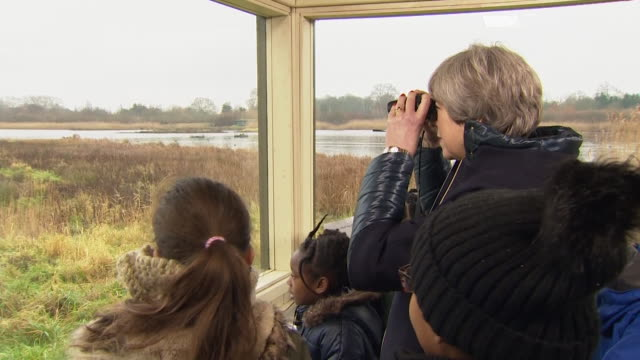 theresa may looking at birds through binoculars with schoolchildren - bird watching stock videos & royalty-free footage