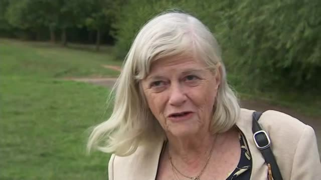 theresa may pledges £4 billion of extra investment to africa as three-day trade mission begins; england: ext ann widdecombe interview sot - ann widdecombe stock videos & royalty-free footage