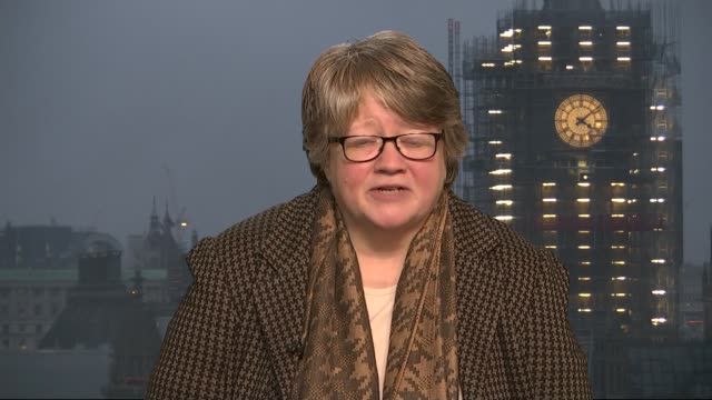 Theresa May stakes claim to green mantle with environment plan ENGLAND London GIR INT Therese Coffey MP 2 WAY interview from Westminster SOT