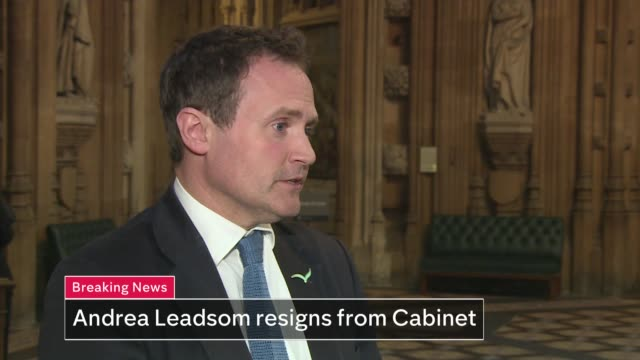 Theresa May's premiership on the brink as cabinet turn on her ENGLAND London Westminster House of Commons lobby Tonbridge and Malling interview SOT...