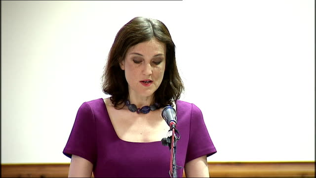 theresa villiers speech in belfast northern ireland belfast assembly buildings int theresea villier mp speech with cutaways sot delivery**... - politics and government stock videos & royalty-free footage