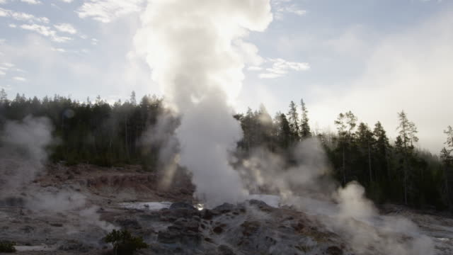 ms thermal pool hot spring geyser with forest trees at morning / yellowstone national park, wyoming, united states - thermal pool stock videos & royalty-free footage
