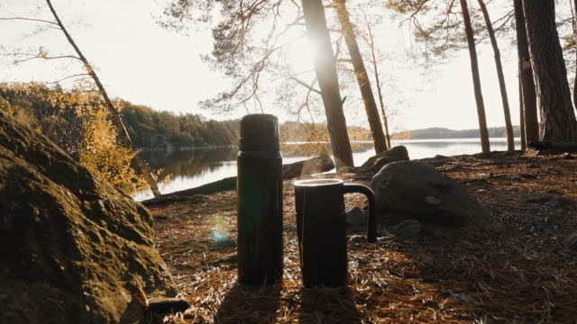 thermos and hot steaming tea - autumn forest - picnic stock videos & royalty-free footage