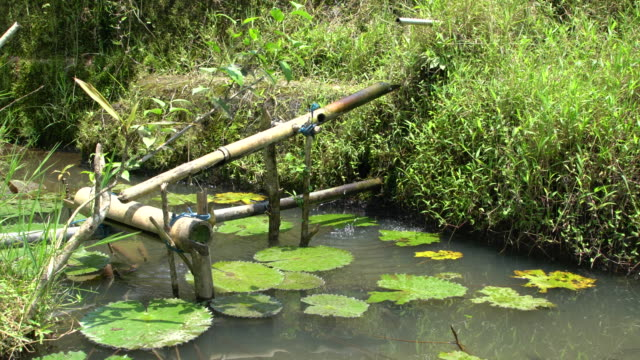 thesubak - traditional balinese cooperative irrigation system) at tegallalang, rice field terrace of bali, indonesia - campuhan stock videos & royalty-free footage