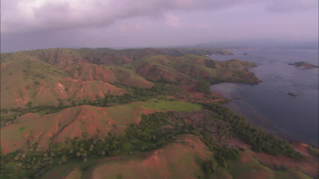 a thick bank of clouds hangs over the lush landscape of komodo island. - insel komodo stock-videos und b-roll-filmmaterial