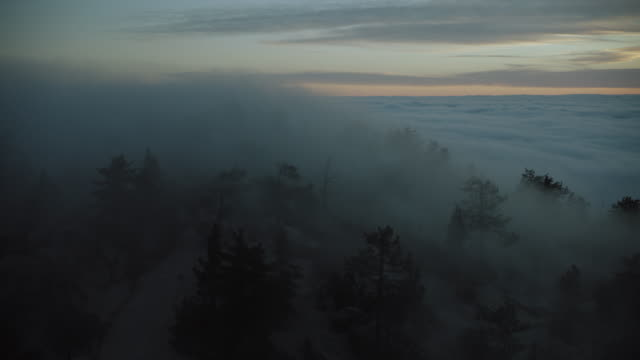 stockvideo's en b-roll-footage met thick clouds enshroud trees on mountain ridge - meteorologie