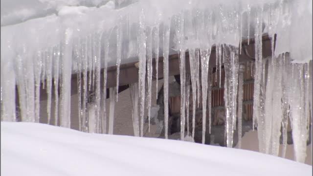 vídeos de stock, filmes e b-roll de a thick curtain of icicles hang from the eaves of a building. - pingente de gelo