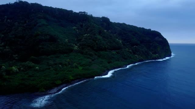 Épaisse forêt couvrant une zone côtière sur l'île de Maui