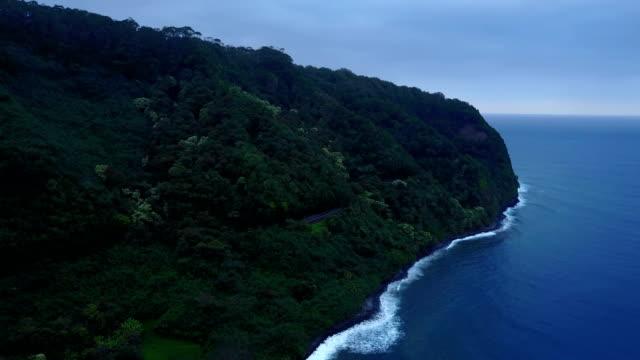 Épaisse forêt sur l'île de Maui, s'étendant vers le bas pour l'eau