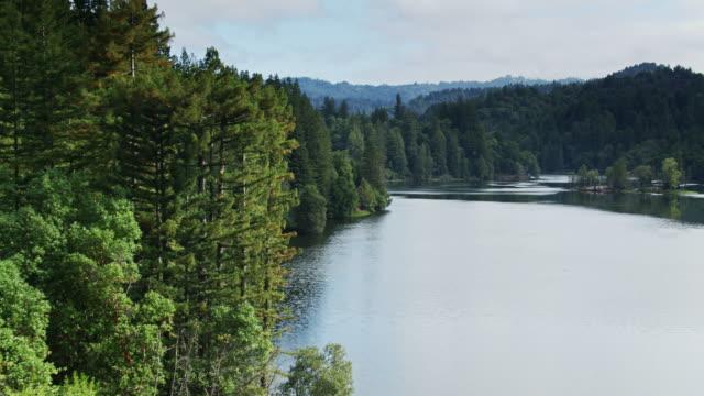 ローモンド湖の厚い森林の海岸, サンタクルス, カリフォルニア州 - ドローンショット - カリフォルニア州サンタクルーズ点の映像素材/bロール