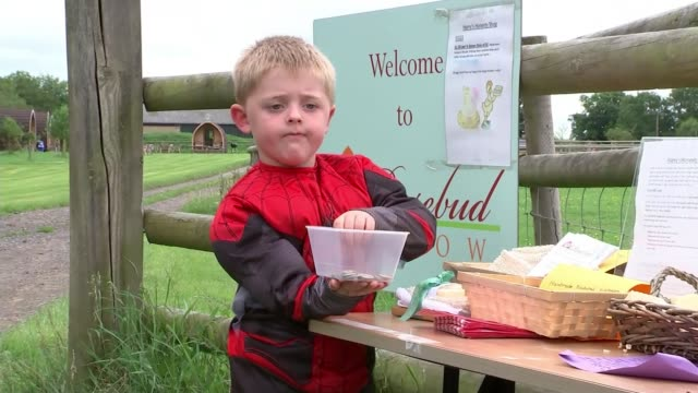 thieves take five-year-old's honesty shop funds; england: worcestershire: ext 5-year-old harry clare along with his mother and checking honesty box... - single object stock videos & royalty-free footage