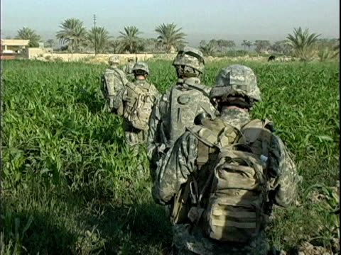 Third Infantry Division US soldiers walking in cornfield during patrol of rural area / Arab Jabour Iraq / AUDIO