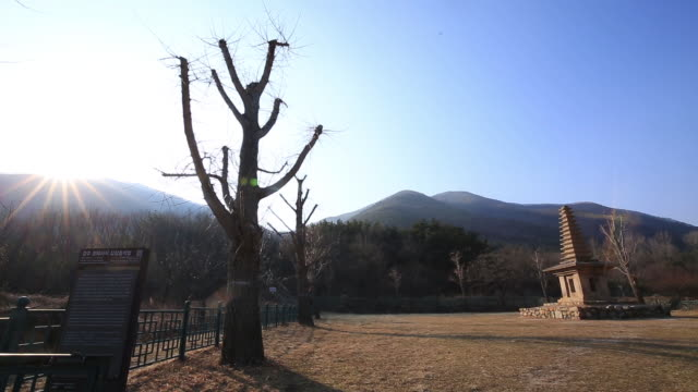 stockvideo's en b-roll-footage met thirteenth-story stone pagoda of jeonghyesa temple (korea treasure 40) - informatiebord