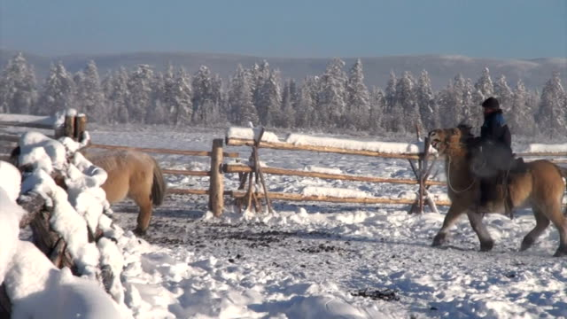 vídeos de stock e filmes b-roll de this clip was shot on february 16, 2013 in oymyakon, russia.oymyakon is one of the coldest permanently inhabited locales on the planet.the... - cold temperature