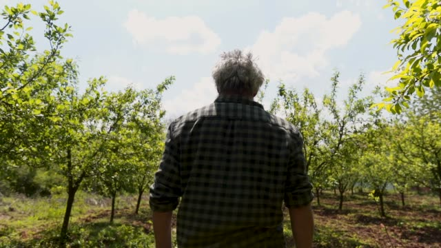 denna gård är min stolthet och glädje - grått hår bildbanksvideor och videomaterial från bakom kulisserna