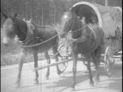 This home movie from Texas oilman EB Hopkins captures scenes of a family vacation to Miami Florida in 1925 These clips show footage of rural...