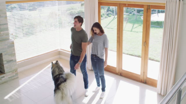 この場所は私たち3人全員にとって十分な大きさです - 家の引っ越し点の映像素材/bロール