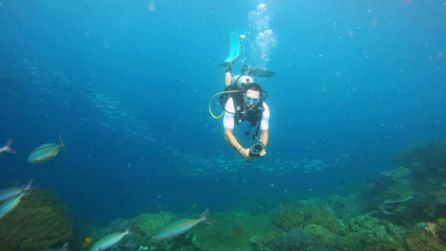 vídeos de stock, filmes e b-roll de este lugar é realmente de primeira classe! - mergulho autônomo