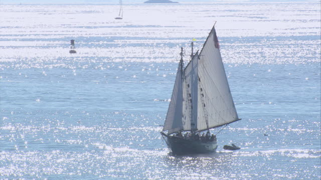 aerial thomas e. lannon yacht sailing through quiet waters / gloucester, massachusetts, united states - gloucester massachusetts stock videos & royalty-free footage