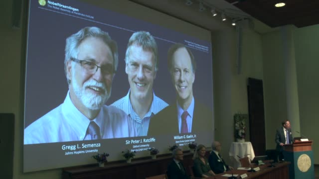 thomas perlmann secretarygeneral of the nobel committee announces the 2019 nobel laureates in physiology or medicine during a press conference in... - anatomy stock videos & royalty-free footage