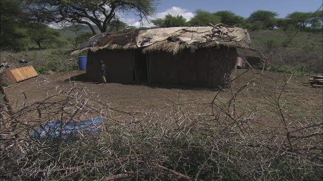 vídeos de stock e filmes b-roll de thorny bushes border village huts in kenya. - telhado de palha