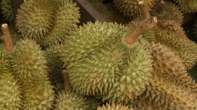 thorny durian on display in a local fruit market - tropical fruit stock videos & royalty-free footage