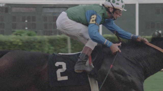 a thoroughbred at a racetrack wins a race in slow motion. - hoof stock videos & royalty-free footage