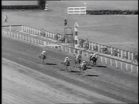 vidéos et rushes de thoroughbred horse race, crowd cheering, horse of the year / new york city, new york, united states - groupe moyen d'animaux