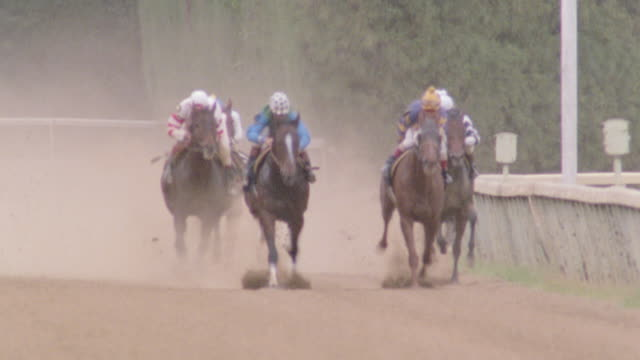 thoroughbred horses round the bend to the homestretch at a racetrack. - horse racing stock videos & royalty-free footage