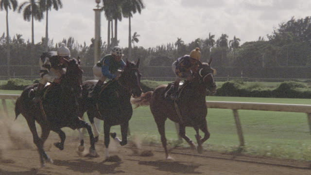 thoroughbreds race down the backstretch of a racetrack in slow motion. - horse racing stock videos & royalty-free footage
