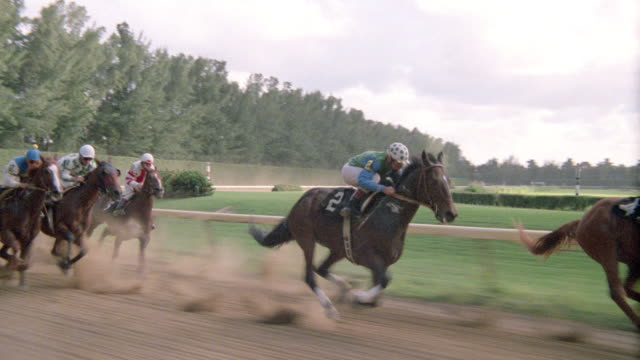 thoroughbreds race down the homestretch toward the finish line. - horse racing stock videos & royalty-free footage