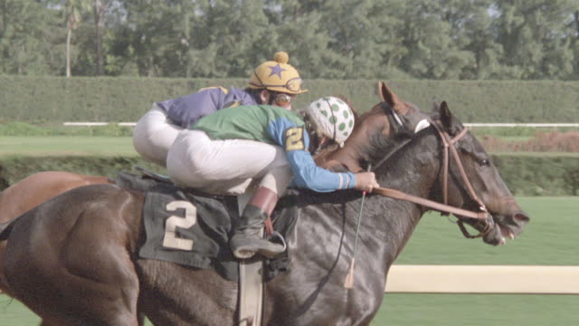 thoroughbreds race neck-and-neck down the backstretch of a racetrack in slow motion. - racehorse stock videos & royalty-free footage