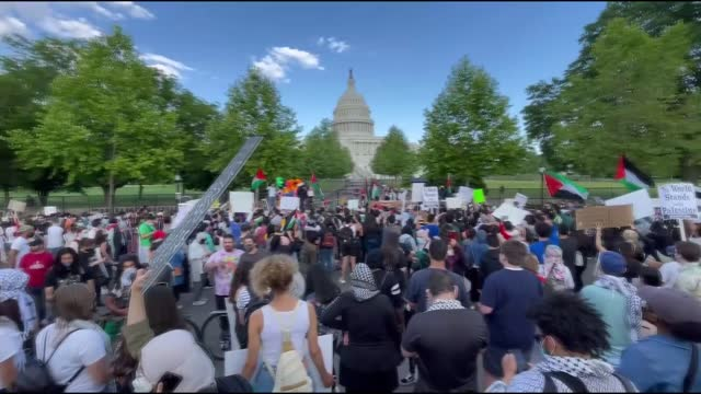 thousands of demonstrators in washington, dc and new york city rallied saturday in solidarity with palestine and to protest israel for attacks on... - イスラエルパレスチナ問題点の映像素材/bロール