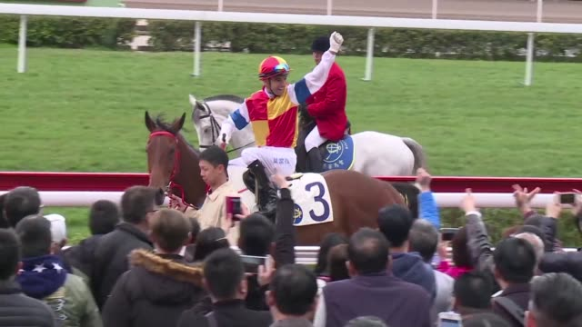 stockvideo's en b-roll-footage met thousands of hong kong racegoers welcome the year of the monkey with a day at the races to mark chinese new year - hong kong