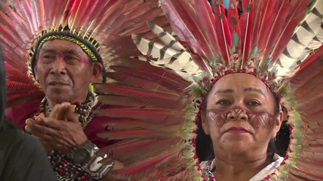thousands of indigenous leaders from the amazon wearing traditional face paint and spectacular feather head decorations gathered thursday in remote... - tradition stock videos & royalty-free footage