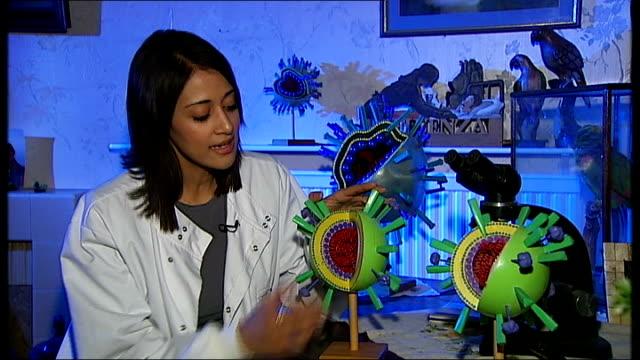 stockvideo's en b-roll-footage met threat to humans of h5n1 bird flu virus england london reporter to camera - vogelpestvirus