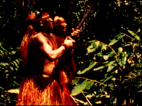 Three Amazon Indian men shirtless red grass skirts hunting in rainforest South America sideview hunters steadying blowguns aiming toward trees Indian...