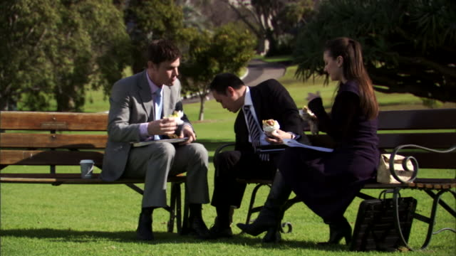 ms, td, three business people eating sandwiches and working in park, sydney, australia, - female with group of males stock videos & royalty-free footage