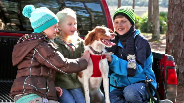 vídeos de stock, filmes e b-roll de três crianças acariciando seu cão, um spaniel brittany - pet clothing