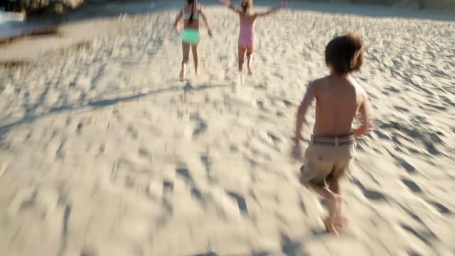 vidéos et rushes de three children running on sand chasing birds - groupe moyen d'animaux