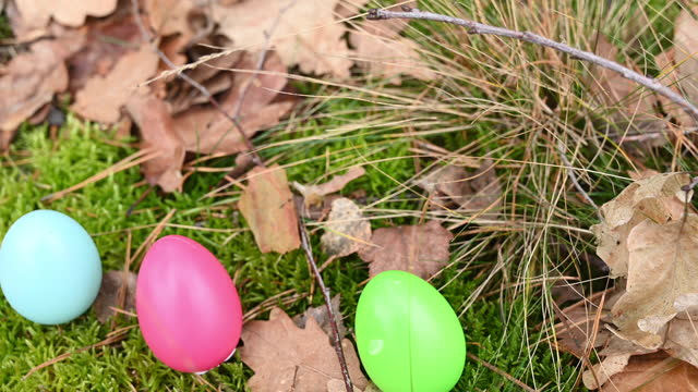 three colourful easter eggs on the green moos in the forest. - verstecken stock-videos und b-roll-filmmaterial
