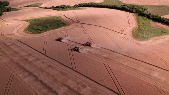 vídeos de stock, filmes e b-roll de trigo de colheita da liga três - land