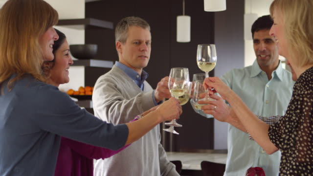 MS Three couples standing together in kitchen toasting wine glasses before dinner