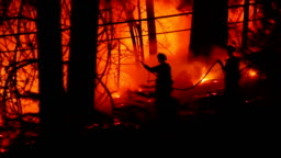 Three courageous fire fighters battle forest fire
