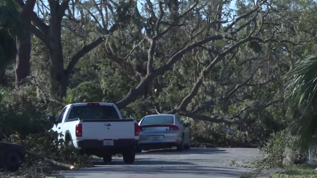 vídeos de stock, filmes e b-roll de three days after the devastating passage of hurricane michael teams in florida pressed their search for victims into hard to reach areas as the death... - ovo mexido
