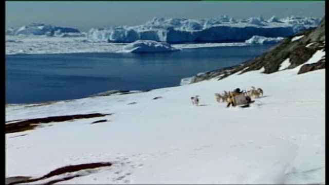 three degrees from disaster: greenland; mcginty with jorgen kristensen along snow covered landscape on dog sled point of view shot of dogs pulling... - circondare video stock e b–roll