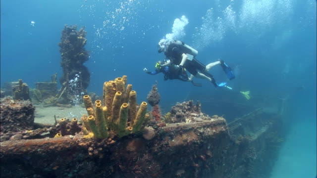 ms, three divers swimming around shipwreck, saint lucia - ancient stock videos & royalty-free footage